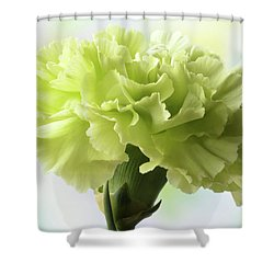 Shower Curtain featuring the photograph Lemon Carnation by Terence Davis