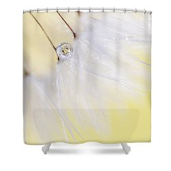 Shower Curtain featuring the photograph Lemon Drop by Amy Tyler