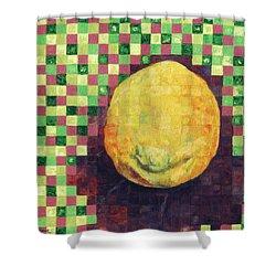 Lemon Squares Shower Curtain by Shawna Rowe