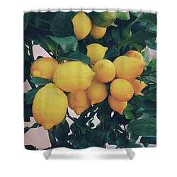 Lemon Tree Shower Curtain by Happy Home Artistry
