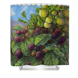 Lemons And Berries Shower Curtain by Laurie Morgan