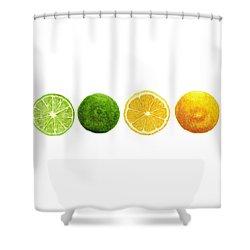Lemons And Limes Shower Curtain by Kathleen Skinner