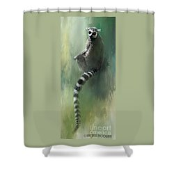 Lemur Catching Rays Shower Curtain by Kathy Russell