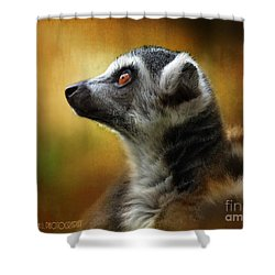 Lemur Shower Curtain by Kathy Russell