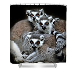 Shower Curtain featuring the photograph Lemurs by Marion Johnson