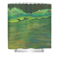 Lenox Audubon Pond 3 Shower Curtain