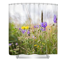 #lensbaby #composerpro #sweet35 #floral Shower Curtain by Mandy Tabatt