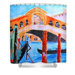 Leonardo Festival Of Venice Shower Curtain