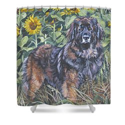 Leonberger In Sunflowers Shower Curtain by Lee Ann Shepard