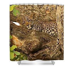 Leopard Cub Shower Curtain