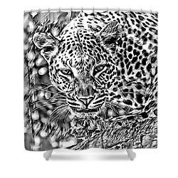 Shower Curtain featuring the photograph Leopard by Lucia Sirna
