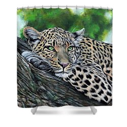 Leopard On Branch Shower Curtain