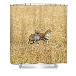 Leopard Pair Shower Curtain