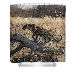 Leopard Tail Shower Curtain