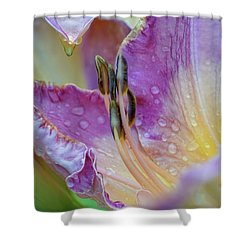 Les Lily Shower Curtain