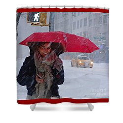 L Esprit De New York - Winter In New York Shower Curtain