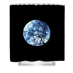 Lesser One Shower Curtain