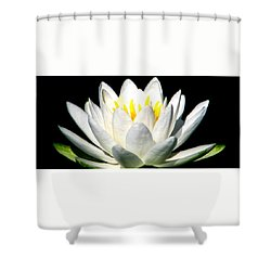 Let It Go Shower Curtain by Angela Davies