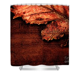 Let Me Hold You...  Shower Curtain