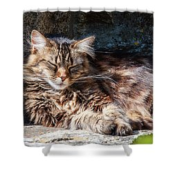 Let Me Sleep... Shower Curtain