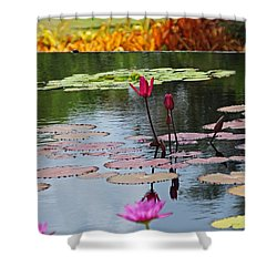 Shower Curtain featuring the photograph Let The Music Lift You by Michiale Schneider