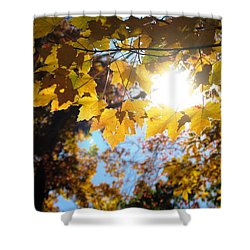 Let The Sun Shine In Shower Curtain by Angela Davies