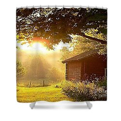 Let There Be Light Shower Curtain by Rod Jellison