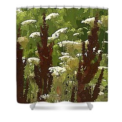Shower Curtain featuring the photograph Let's Dance by Betsy Zimmerli