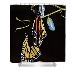 Let's Hang Out Together Shower Curtain