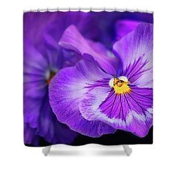 Letters To Violet Shower Curtain