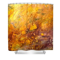 Letting The Sunshine In Shower Curtain by Valerie Travers