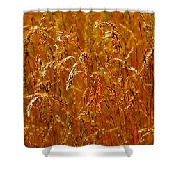 Shower Curtain featuring the photograph Levels Of Grain 23  by Lyle Crump
