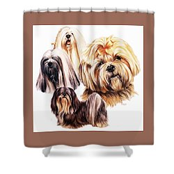 Lhasa Apso Shower Curtain by Barbara Keith