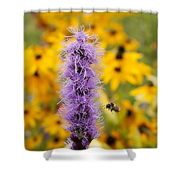 Liatris And The Bees Shower Curtain