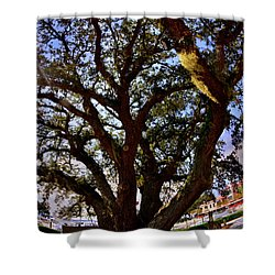 Liberty Oak Harbour Town Hilton Head Sc Shower Curtain
