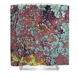 Lichen Colors Shower Curtain by Todd Breitling
