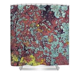 Lichen Colors Shower Curtain