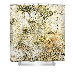 Shower Curtain featuring the photograph Lichen On A Stone, Background by Torbjorn Swenelius