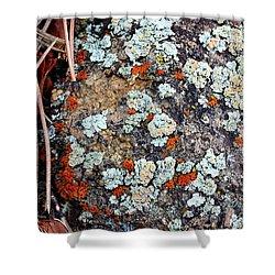 Lichen With Pine Shower Curtain