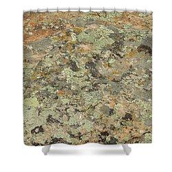 Lichens On Boulder Shower Curtain by Jayne Wilson