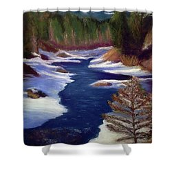 Licia's Painting Gratitude Shower Curtain