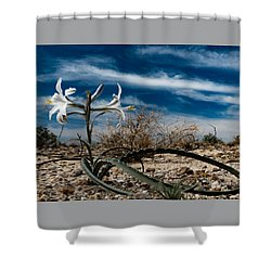 Life Amoung The Weeds Shower Curtain