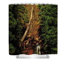 Life And Death Shower Curtain by Rick Furmanek