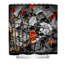 Life Behind The Wire Shower Curtain