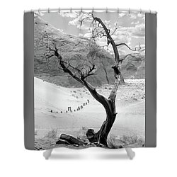 Shower Curtain featuring the photograph Life In The Desert -  Arizona by Mike McGlothlen