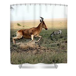 Life In The Wild Shower Curtain by Happy Home Artistry