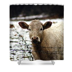 You Know It's You ,who Calls Me Back Here Babe Shower Curtain