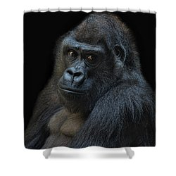 Life Is Not Allways Funny Shower Curtain