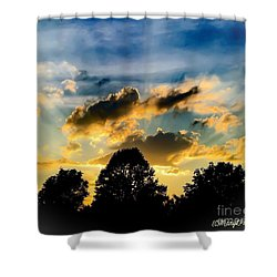 Life With Out Words Shower Curtain by MaryLee Parker
