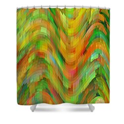 Life's A Rollercoaster Shower Curtain